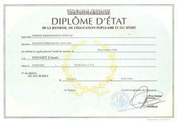 01-KARATE-et-KRAV-MAGA-Diplome-D-Etat-DEJEPS