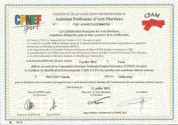 CQP-CERTIFICAT-QUALIFICATION-PROFESSIONNELLE-ARTS-MARTIAUX-CHINOIS-EXTERNES